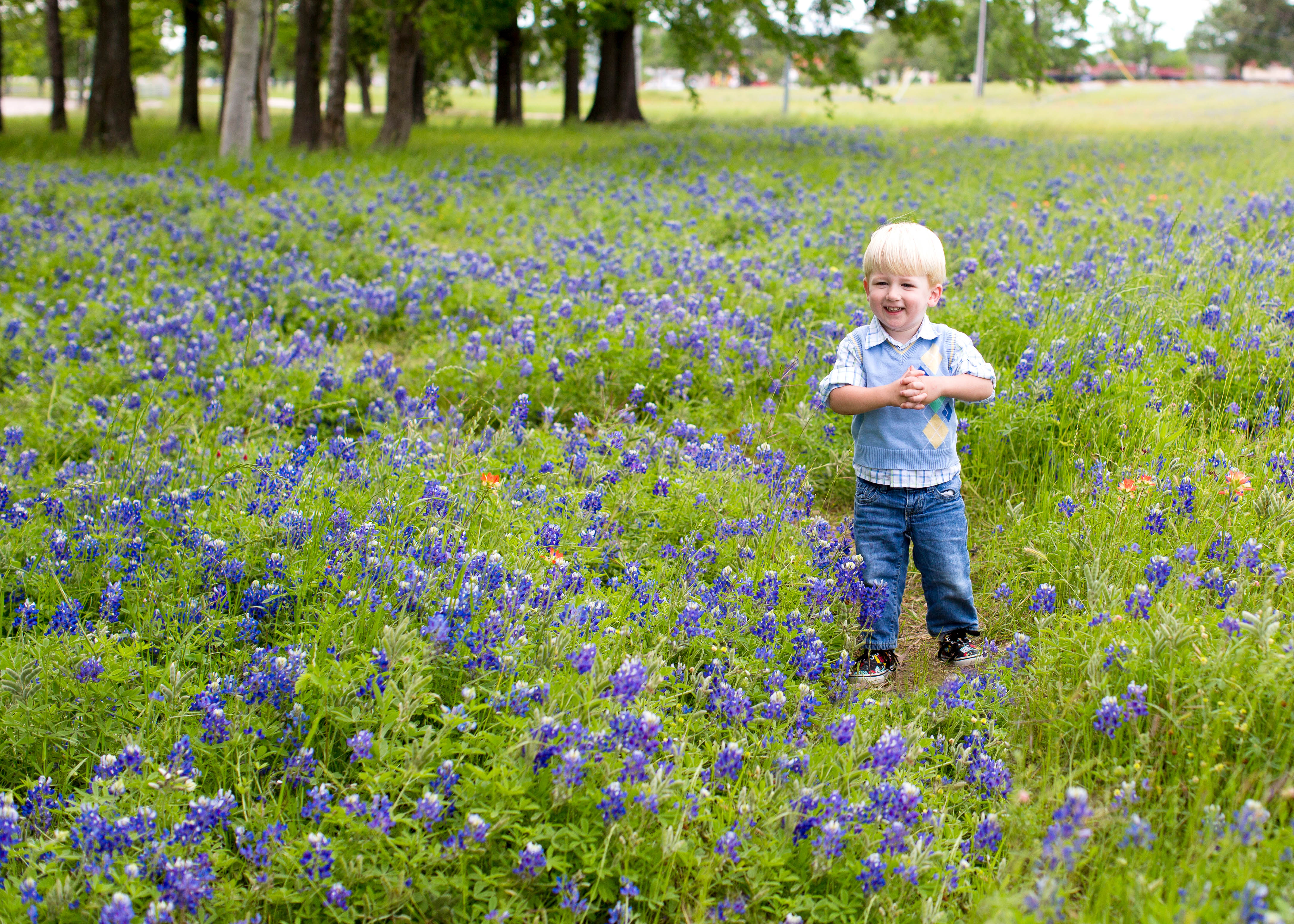 Where To Find Bluebonnets In Houston This Spring Mommypoppins