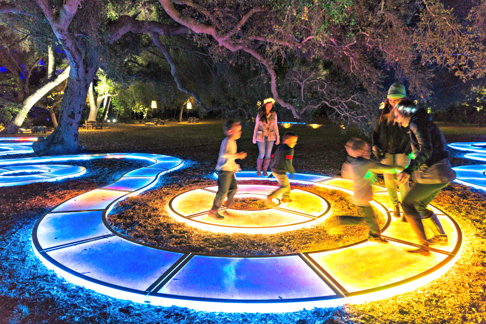 Enchanted forest of light is descanso gardens 39 christmas - Descanso gardens enchanted forest of light ...