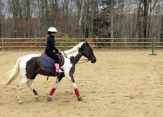 Best Philadelphia Horseback Riding Lessons For Kids