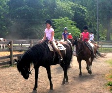 Horseback Riding In Nyc Lessons And Rides For Kids