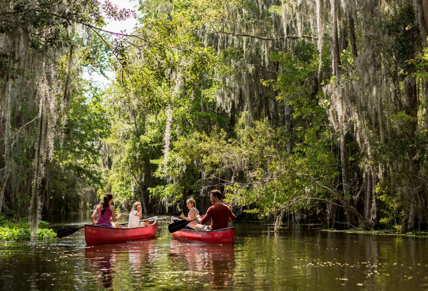 50 Things To Do In Orlando With Kids Other Than Theme Parks