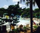 Night Heron Pool Complex