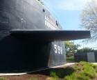 "USS George Washington ""sail"""