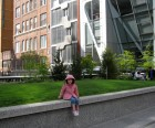 The High Line, the 23rd Street Lawn is perfect for picnicking