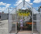 """André Feliciano's Greenhouse filled with colorful """"camera flowers"""""""