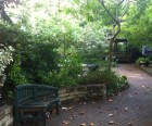 A meandering path through All People's Garden
