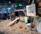 Backyard chickens at the Cars junkyard