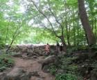 Entering Ringing Rocks field