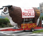 Watch for the giant bull around town!