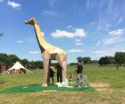 Achilles is a life-size giraffe that you can draw on with chalk