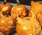 Brookfield Halloween