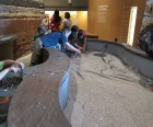 Hands-on play at the Utah Natural History Museum
