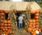 A pumpkin playhouse