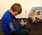Young cat lovers have so much fun, you have to claw your way out of there with them!