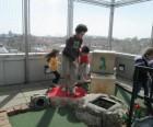 And mini-golfing through big cultural events