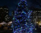 Madison Square Holiday Tree Lighting