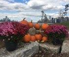 Pumpkin Point