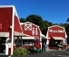 Mini Golf and More at Red Barn