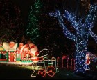 Smedley Street Christmas Light Spectacular