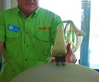 Clearwater Marine Aquarium guide shows us Winter's prosthetic
