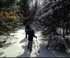 Snowshoeing tour with Alpine Adventures