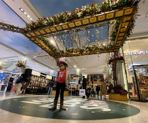 See beautiful blooms at Macy's free annual flower show
