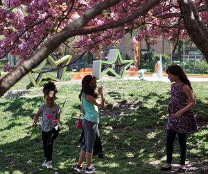 Socrates Sculpture Park is a fun, free spot to visit in NYC