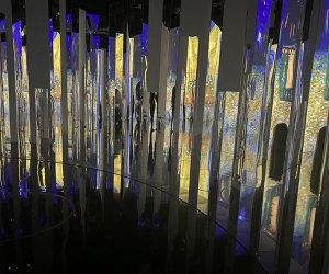 Immersive Van Gogh exhibit at Pier 36