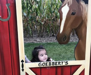 Best Farms for Family Fun and Entertainment in Chicago: girl playing on farm