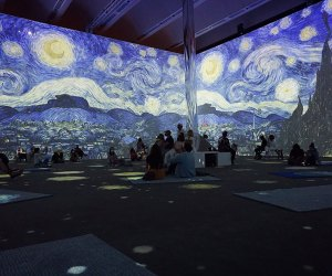 Van Gogh: The Immersive Experience The Starry Night