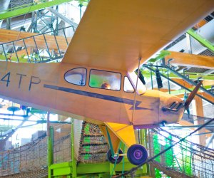 The Best Children's Museum in Every State: Museum of Natural Curiosity