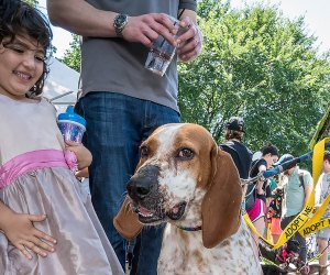 Grow your family with a furry friend at Adoptapalooza this weekend in Union Square.