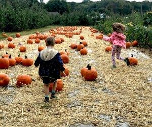 Preschoolers in a pumpkin patch