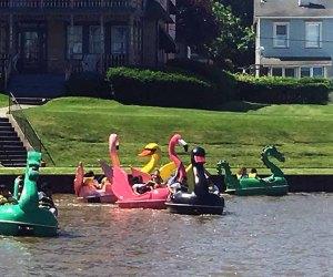 Ride a swan at Asbury Park Pedal Boats