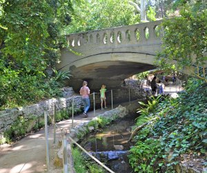 Ferndell in Griffith Park