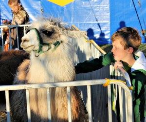 Kids Fun Fair at the Commerford Zoo. Photo courtesy of Kids Fun Fair