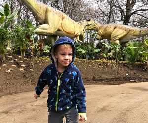 Over 40 life-size, animatronic dinos are coming to the Dinosaur Safari at the Bronx Zoo.  Photo by Rose Gordon Sala