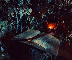 Home Haunts and Amazing Halloween Decorations in Los Angeles: Haunted Happenings