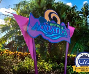 Theme Park Magic for Kids of All Abilities: SeaWorld