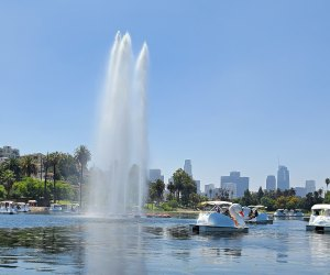 The fountain in the middle of Echo Park Lake as seen from the swan boats.