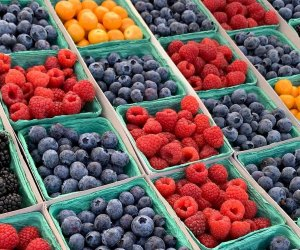 Things To Do with Kids in Manhattan Beach : Visit the Farmers Market