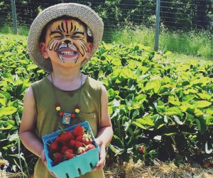 Strawberries bring smiles at Fishkill Farms. Photo courtesy of the farm