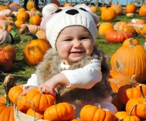 Kids will lose themselves in a host of attractions at Garden of  Eve's PumpkinFest. Photo courtesy of Garden of Eve Organic Farm