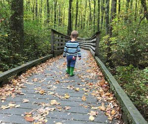 Boy walks down the hiking trail at Great Swamp National Wildlife Refuge