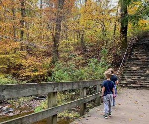 kids peer over a bridge into a river at Hacklebarney State Park