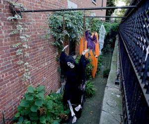 A skeleton, witch, and ghost dangle in a side alley