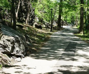 Highbridge Park is a beautiful spot to go hiking