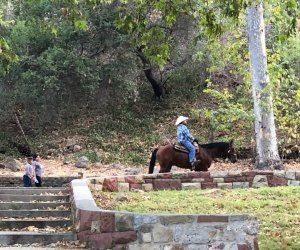 Griffith Park Shakespeare: and a horse rides by