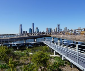 The Pier 26 Tide Deck offers a lesson in river ecology
