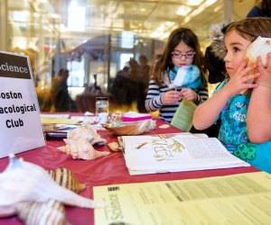 The I Love Science festival encourages hands-on learning. Harvard Museum of Natural History. Photo by Patrick Rogers